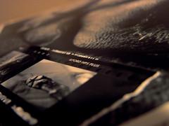 i  film (saikiishiki) Tags: blue dog white black love film darkroom dark print grey paw bokeh room gray weimaraner coolpix contactsheet uncropped  peice  weim greyghost  squidoo weimie weimaranerart harrypaw starpaw weimaranerpaw chanhispaw  waimarana weimaranerartist weimaranerphotography weimaranerphotographer saikiishiki