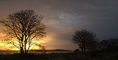 December Sunrise Isle of Jura (grahame_uk) Tags: sunrise scotland questfortherest isleofjura eos400d