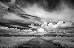 Utopia (LucaPicciau) Tags: road sky blackandwhite bw cloud lake water lines clouds lago nuvole nuvola cielo utopia incognita cieli lupi navigazione picciau