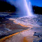Yellowstone National Park, Letting off Steam, Wyoming