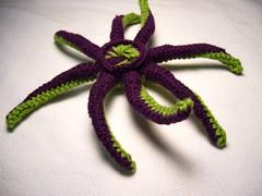 P1060084 (Sissyvette) Tags: ten tentacles