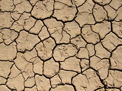 Sun-Baked earth Texture (Annie in Beziers) Tags: sun france texture sand earth sable dry explore terre cracked baked etang vendres annieinbziers