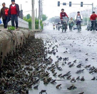 四川汶川7.8级大地震