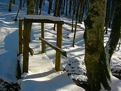 Urkiaga nieve puente (quintoreal) Tags: navarra eugi urkiaga quintoreal