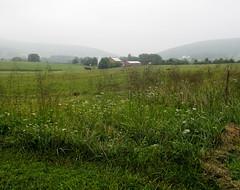 A farm in the hills (Donna Will) Tags: green field clouds barn canon virginia farm barns overcast hills hillsboro loudouncounty canong10