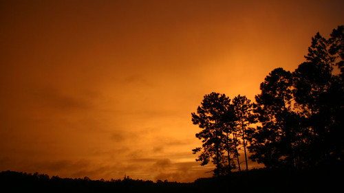 Wild, Rainy Sunset II