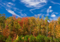 Autumn Beauty (K. W. Sanders) Tags: autumn trees nature clouds forest landscape colorful canon20d 123 canon1740mmf4l flickrexplore fallseason napg naturesgallery mywinners 72hourchallenge treesubject diamondclassphotographer flickrdiamond betterthangood canon1740f4lusmgroup naturepicsthatwowus
