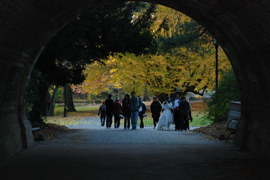 Prospect Park Bride Tunnel