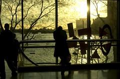 (boston wedding photographer lisa rigby) Tags: window silhouette boston golden massachusetts charlesriver bostonist museumofscience diamondclassphotographer