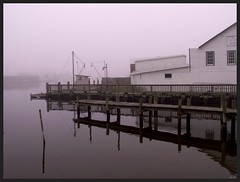 Oyster House in Fog (photo_secessionist) Tags: color reflection film water fog zeiss 35mm pier fishing dock kodak 1938 maryland jena contax seafood oysters pilings zeissikon chesapeakebay patuxentriver gold200 solomonsmaryland contaxiii zeiss1155cmsonnarlens
