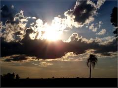 Sunset... Final de tarde...