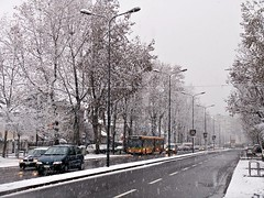 It's snowing (aleph78) Tags: winter italy snow milan nikon italia milano coolpix 5400 nikoncoolpix5400