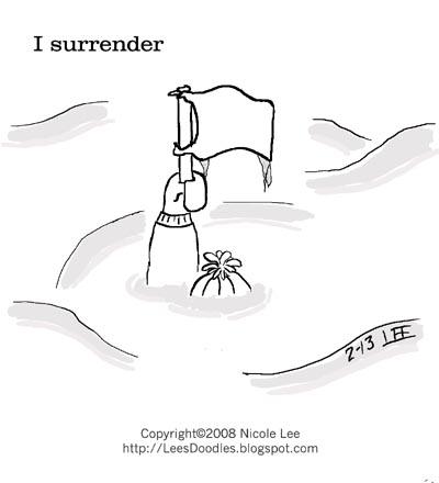 2008_02_13_surrender
