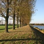 Beemster: Noorddijk landscape in autum