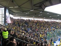 Die BVB-Fans