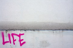 pink life (xgray) Tags: life pink white texture wall upload canon austin word graffiti alley texas tag text iphoto written rectangle ef24mmf14l ef24mmf14lusm canoneos40d postedtobehindthelensonlj xgv08 top2008