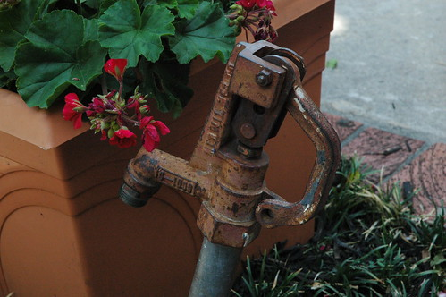Paseo water pump
