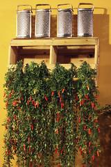 (angelasmorato) Tags: ambienteinterno decoração ralador amarelo verde vermelho parede
