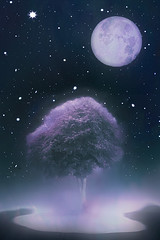 tree and moon (Hal Halli....happy everything!!) Tags: moon tree abstract night space meditation universe wallart magicunicornverybest shockofthenew crazygeniuses