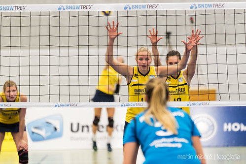 "3. Heimspiel vs. Volleyball-Team Hamburg • <a style=""font-size:0.8em;"" href=""http://www.flickr.com/photos/88608964@N07/32694282641/"" target=""_blank"">View on Flickr</a>"