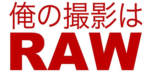 I Shoot RAW Japan Charity Shirt
