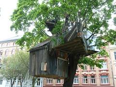 Midt i byen (Marthe Berit) Tags: trehytte