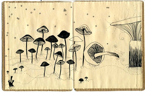 book of mushrooms 2 / Cecilia Levy