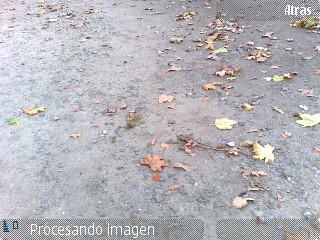 Procesando Imagen N95