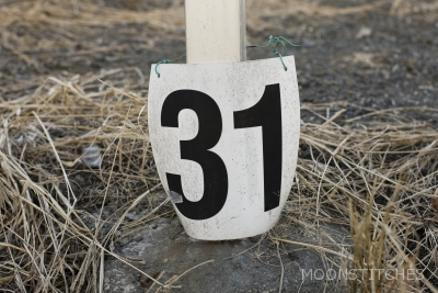 counting, 31