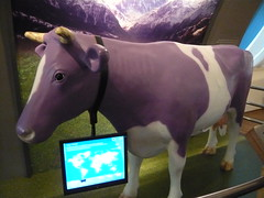 Milka cow /    (mitko_denev) Tags: museum germany deutschland cow chocolate cologne kln nrw milka nordrheinwestfalen chocolatemuseum northrhinewestphalia