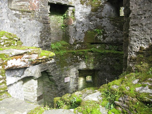 Ruined Castle Section