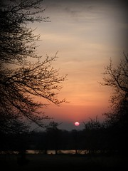 Romantic Spring Morning (deepintheforestcat) Tags: lake sunrise landscape spring mood superb romantic atmospheric masterpiece blueribbonwinner mywinners walkinginbeauty platinumphoto journeytopeace superbmasterpiece diamondclassphotographer stilllifetheharmonyofpeace ddsnet