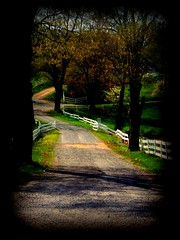 A Brighter Path (leahtalley81) Tags: rural photography leah falls bryant clifton talley fallschurchva amature fairfaxcounty cliftonva amaturephotographer leahtalley leahbryant vaphotographer leahtalley81leah churchfalls churchamature photographeramature