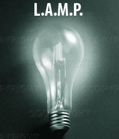 light-bulb_~SS46007.jpg