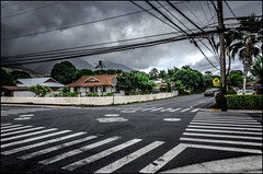 The Crossing - 2016 (Patricia Colleen) Tags: lahaina crosswalk maui hawaii powerlines palmtrees