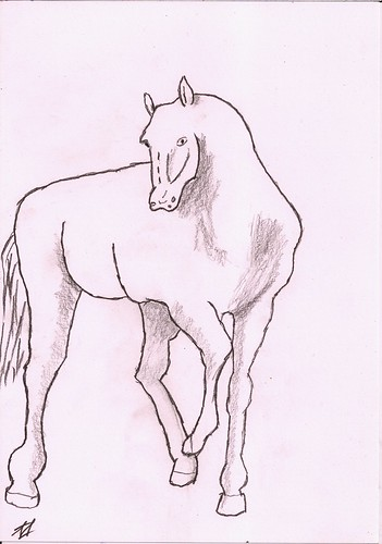 Horse without a knight