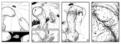 dock! (theWoodenKing) Tags: horse penis comic head part