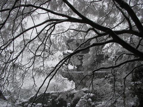 当麻寺(雪景色)-05