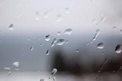 Rainy Cayuga Lake