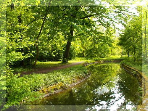 Bois de Boulogne 6