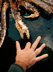 Injury_17 (coreyfishes) Tags: ocean sea snow color ice dutch weather alaska danger harbor photo fishing fisherman king arnold picture wave crab corey catch kingcrab discovery harsh beringsea crabbing rollo bering snowcrab opilio deadliest deadliestcatch coreyfishes