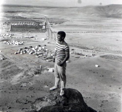 مسعود محمدی