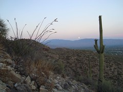 moonrise (azhiker_grrl) Tags: sunset arizona moon nature desert tucson hike fullmoon saguaro ocotillo sabinocanyon blackettsridge