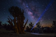 Searching (EricGail_AdventureInFineArtPhotography) Tags: sky stars nightscape landscape night milky way milkyway