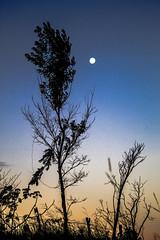 A beleza está nos olhos fe quem vê! (Caio Barros Fotos) Tags: sunset anoitecer entardecer lua