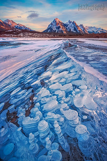Bubble Mania On Abraham Lake in Canadian Rockies