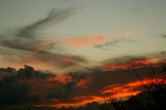 Funky sunset (Zelda Wynn) Tags: sunset red black nature clouds twilight cloudscape troposphere weatherwatch ©zeldawynn zeldawynnphotography