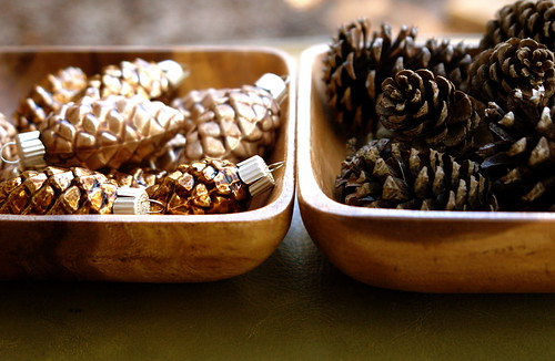 Will The Real Pinecones Please Stand Up?