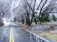 Blockage and Outtage (Allie's.Dad) Tags: trees tree ice nature pennsylvania branches icestorm damage topic roadblock sleet frozenrain views25 middletownpa powerouttages ruralpennsylvainia