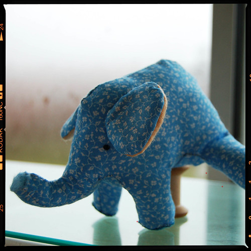 Tiny Elephant softie and dreams